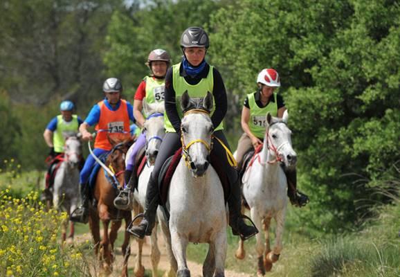 Printemps de l'endurance Haras national Uzès