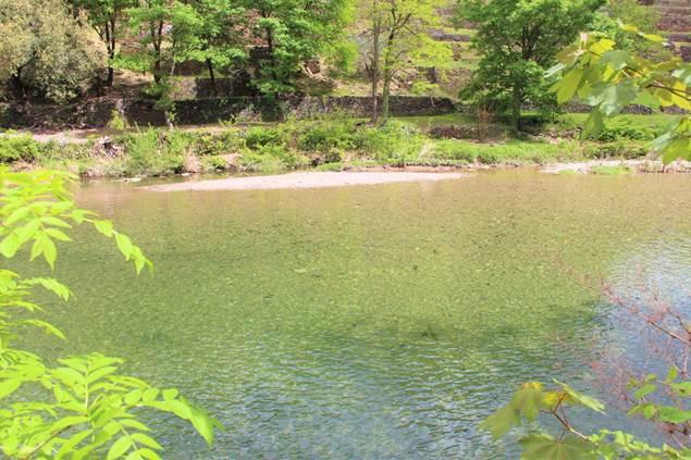 rivière avec plage de détente