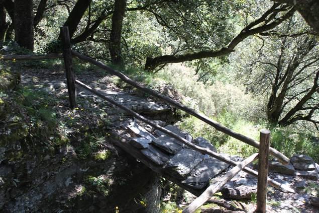 Petit pont au détour du sentier