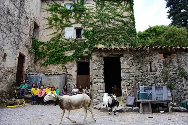 poneys-du-val-d-emeraude
