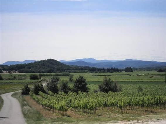 Domaine des Arnasseaux vins des Cévennes