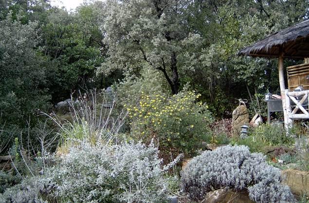 Jardin du Mas de la Frigoule - ANDUZE