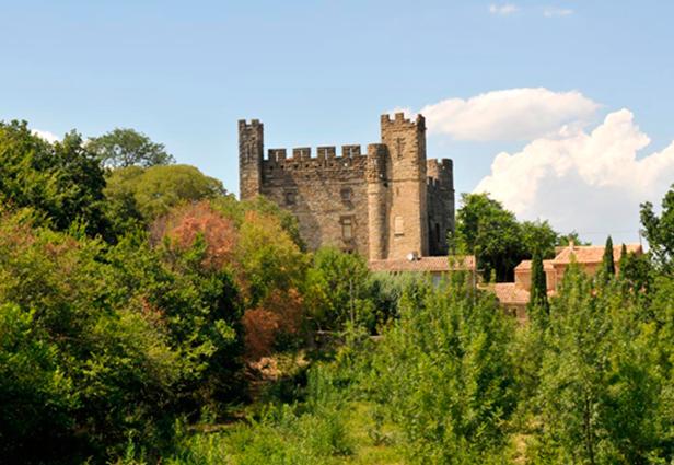 Château de Castelnau Valence