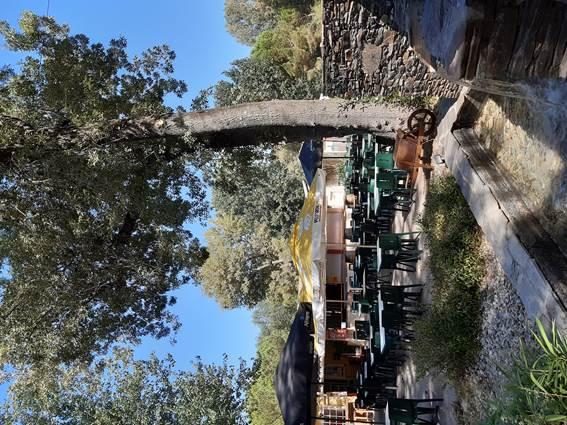 Camping-Domaine-de-Gaujac-30