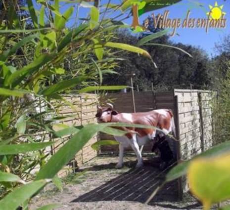 village des enfants à MONTAGNAC vache