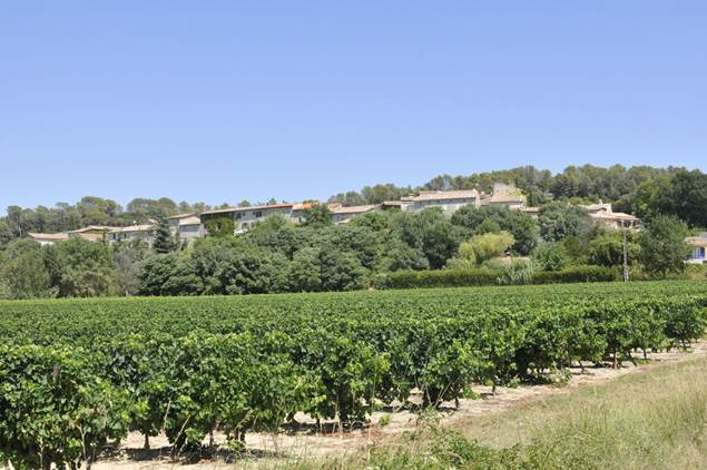 Massanes-village-vignes