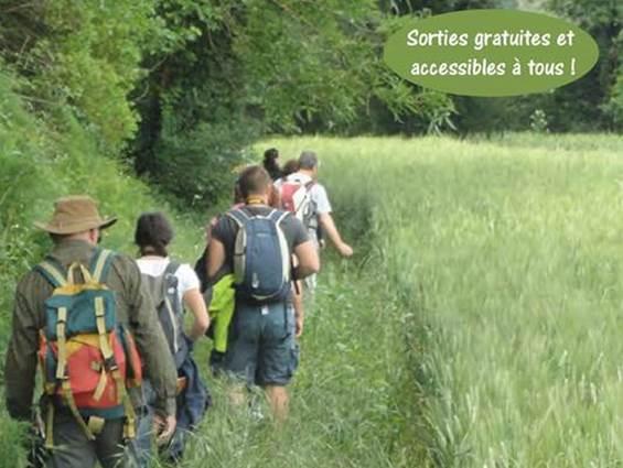 Randonnée : Histoires d'eau - Massillargues Attuech