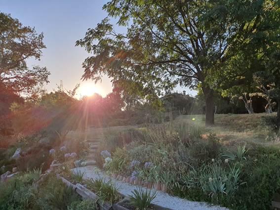 coucher de soleil sur le jardin