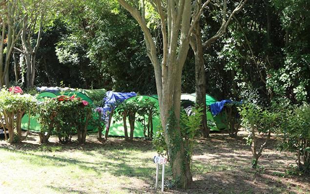 Camping La Chicanette