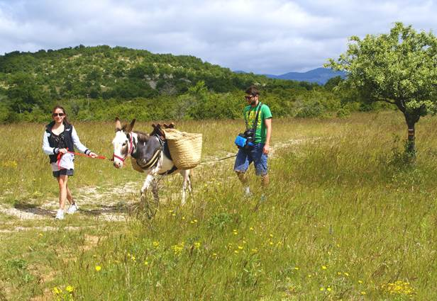 Randonnée avec un âne en Cévennes