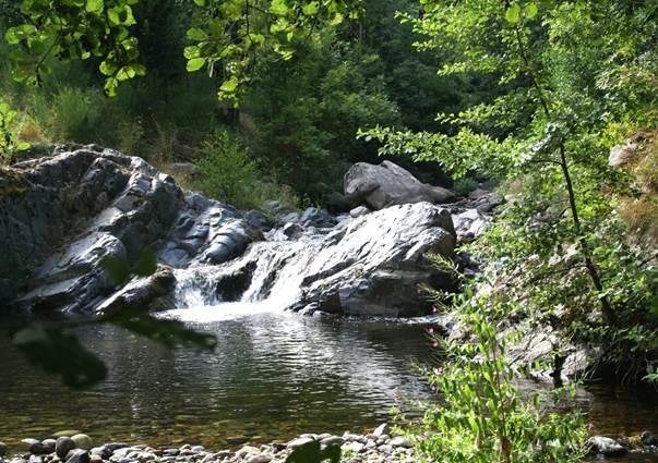 Rivière cévenole