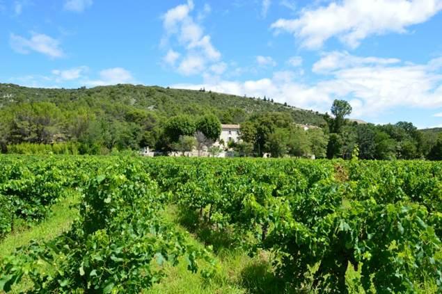 La Bastide de Peyremale - Melliflu
