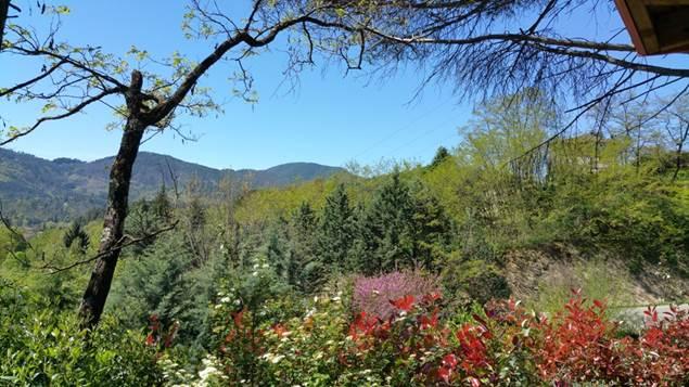 Vue sur la montagne au Camping les Sources