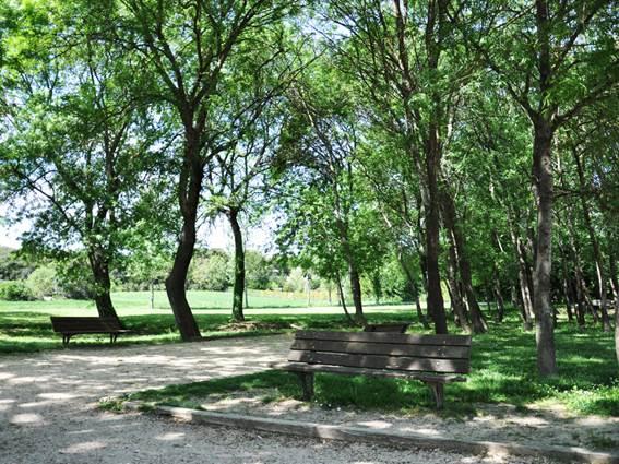 Saint-Privat-des-Vieux-parc