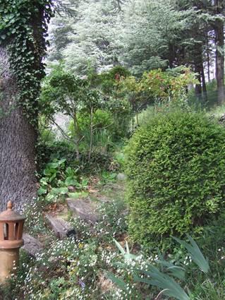 Jardin du Tomple - Génolhac