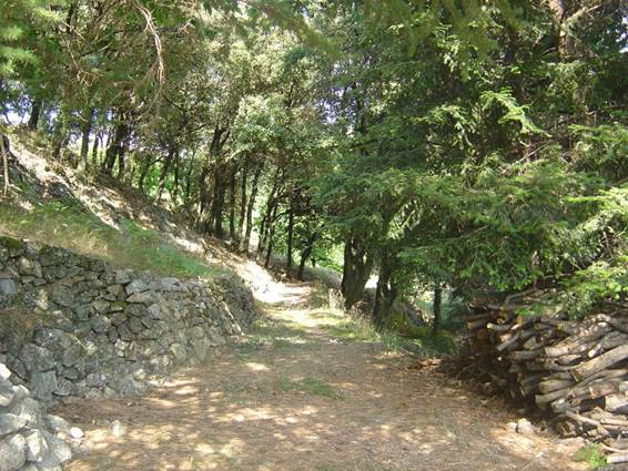 Gîte n°30G11903 – COLOGNAC – location Gard