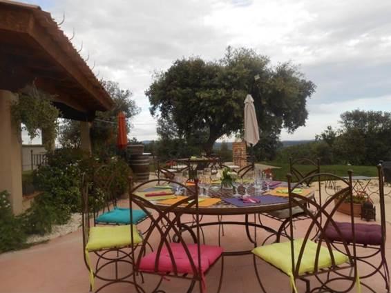 Domaine Du Serre D'Avène Restaurant Le Mas St Christol Les Ales