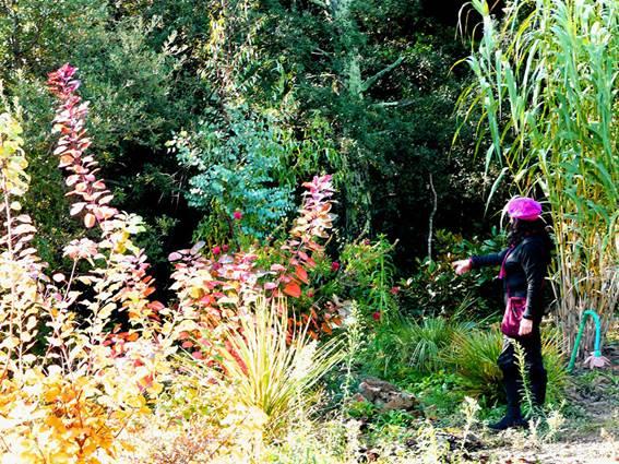 La Jardin Mas de la Frigoule