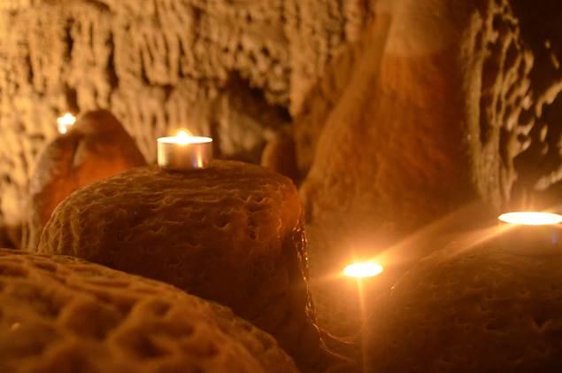 Grotte de Trabuc - MIALET