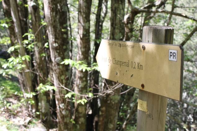 Sentier de Chamdomergue