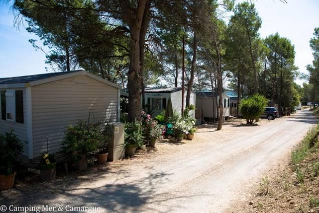 Camping Mer et Camargue