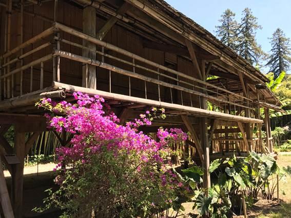 Case en Bambou 2 p 9&10
