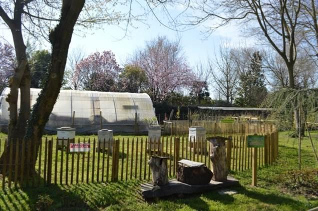 Parc floral des camellias - rucher pédagogique