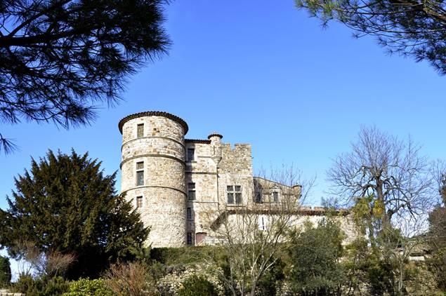 Saint-Bonnet-de-Salendrinque-chateau-castellas-2