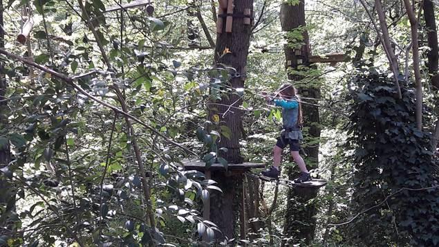 Parfum d'aventure - havre de paix au milieu des arbres