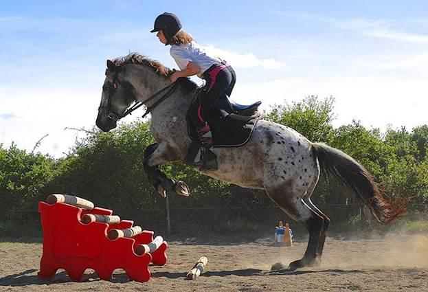 poney-club-mas-nouguier-saut