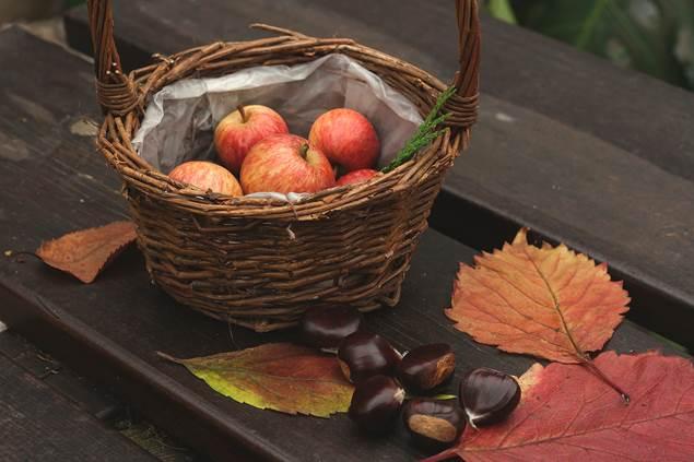 Samoussas pommes châtaignes