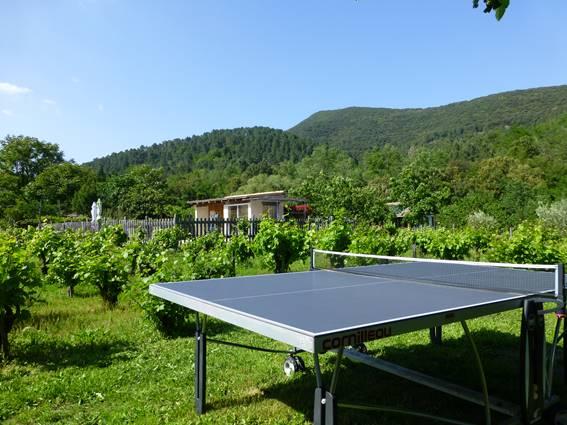 chalet-location-la-bayte-le-martinet-cevennes-gard