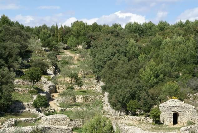 La Combe des Bourguignons- Escapades Nature Gard