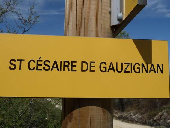 Vignoble Céven Cep - ST CEZAIRE DE GAUZIGNAN