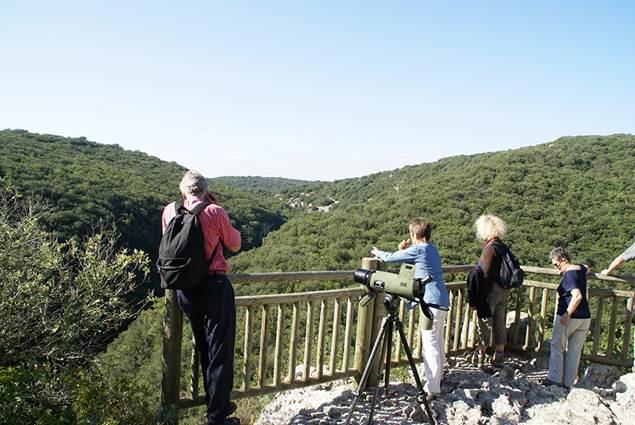 A la découverte des Concluses- Escapades Nature Gard