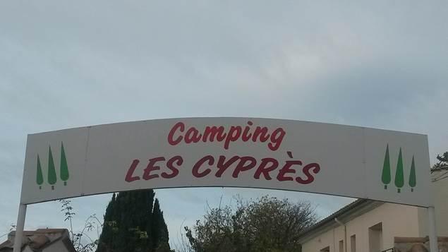 Les Cyprès