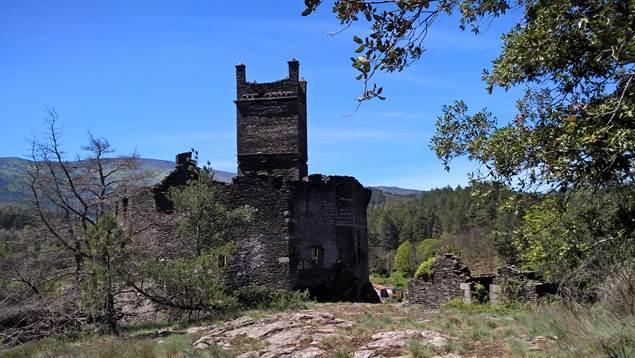 chateau-de-brisis-ponteils-et-bresis