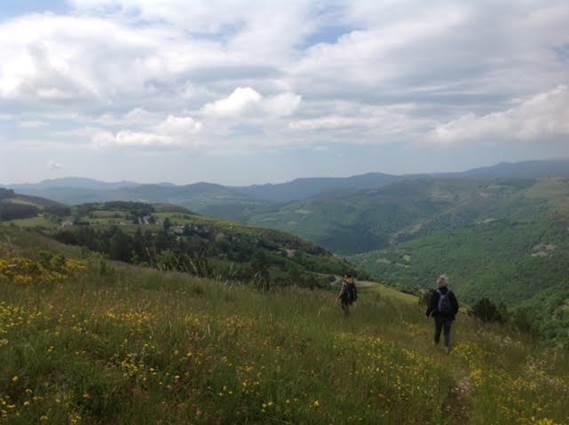 Le Parc National des Cévennes et sa programmation