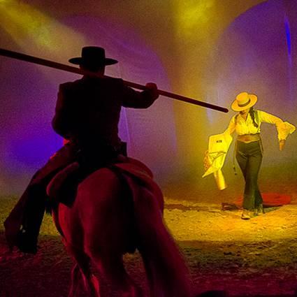 Cabarets Equestres de Camargues Sables et dunes - GRAU DU ROI