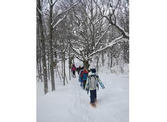 sentiers-vagabonds-hiver