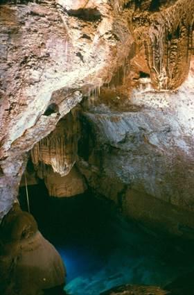 Mialet - Grotte de Trabuc