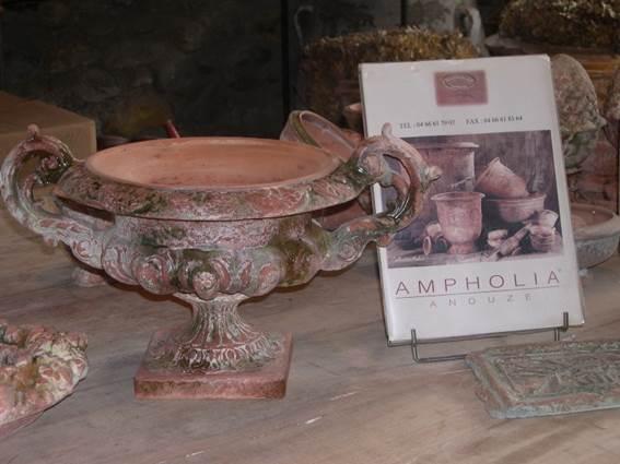 Ampholia - Coupe