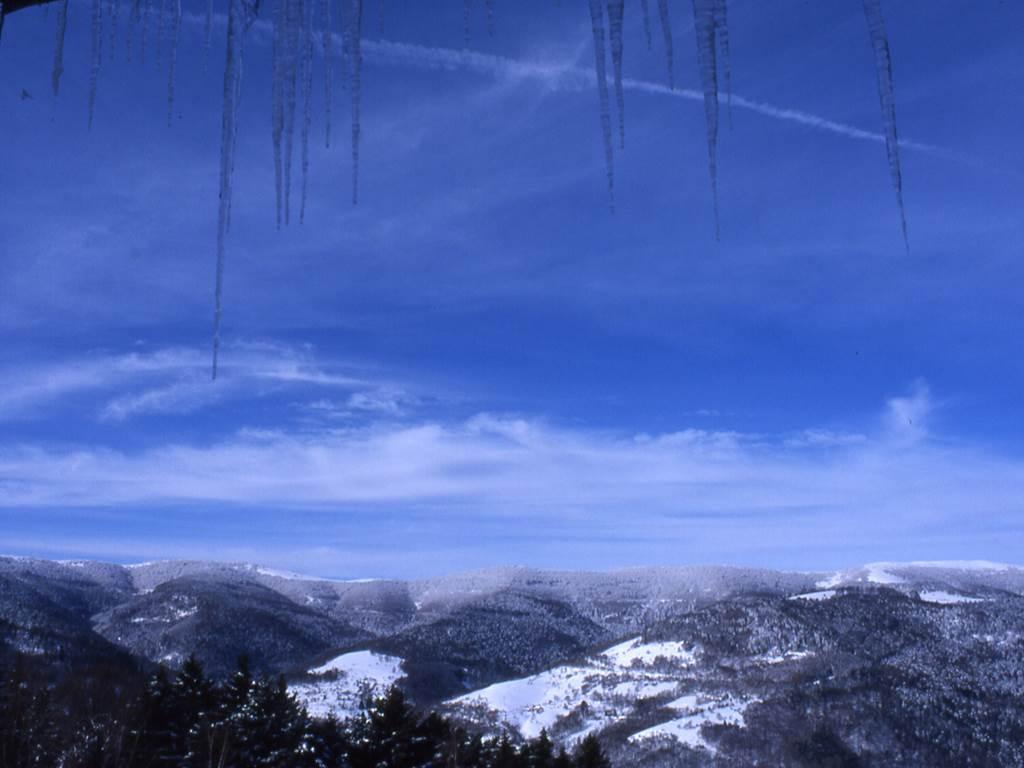 paysage d'hiver  depuis la fenêtre des 4 saisons