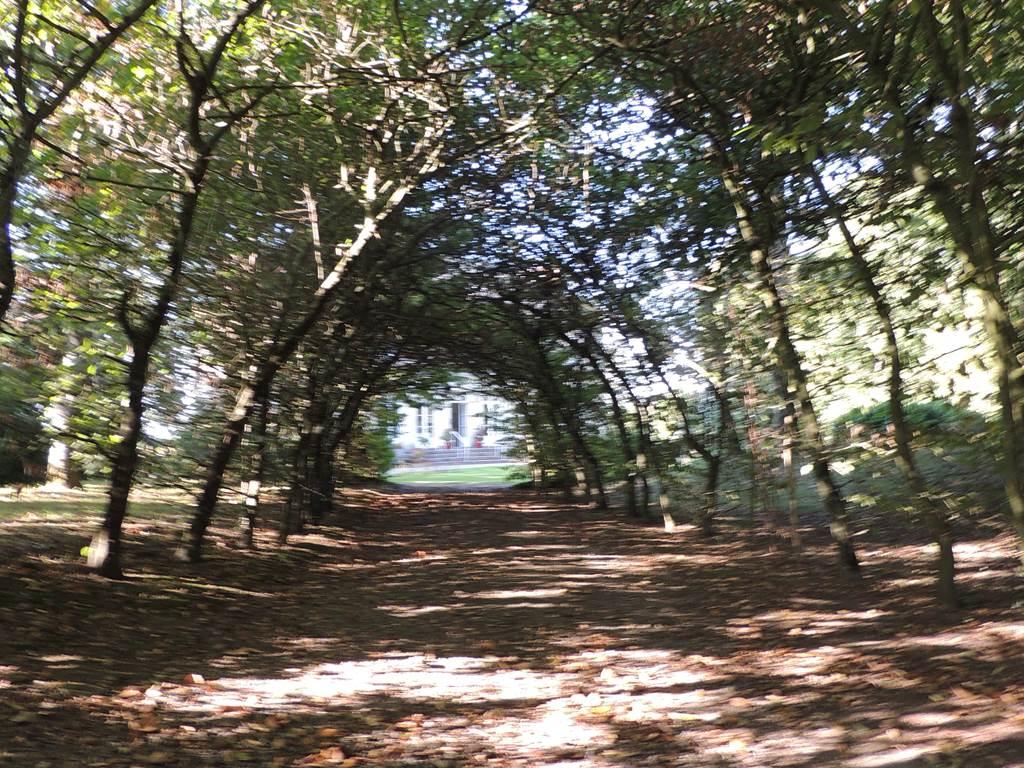Laissé bercé par le chant des oiseaux, sous la charmille ou les arbres centenaires.