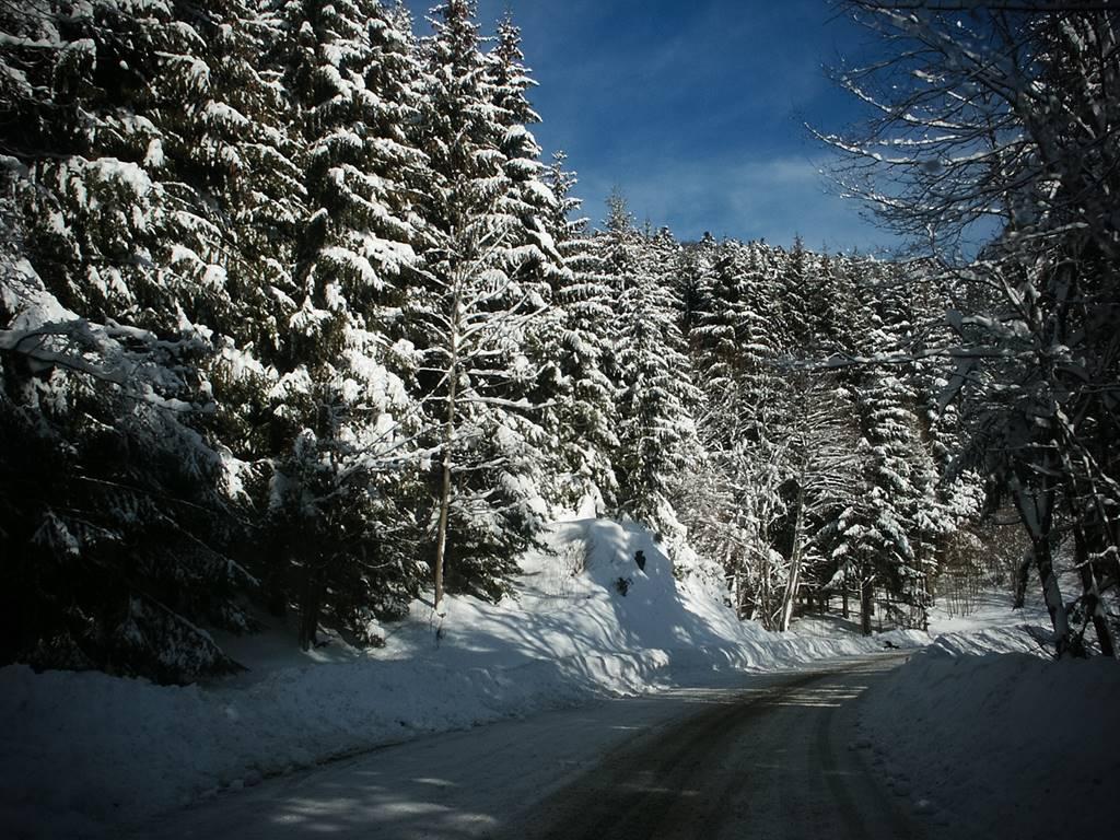 route d'accès de Kruth au  Frenz