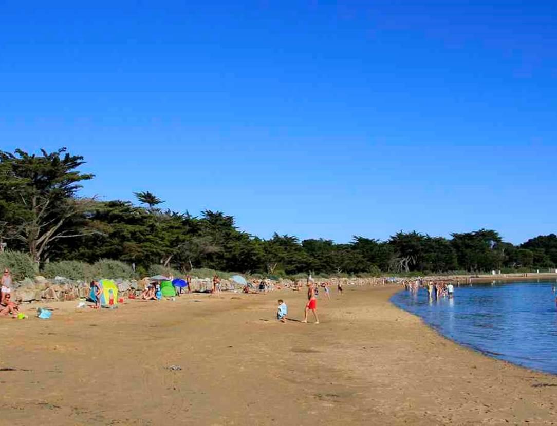 Plage de Locmiquel-Larmor Baden-Golfe-du-Morbihan-Bretagne sud