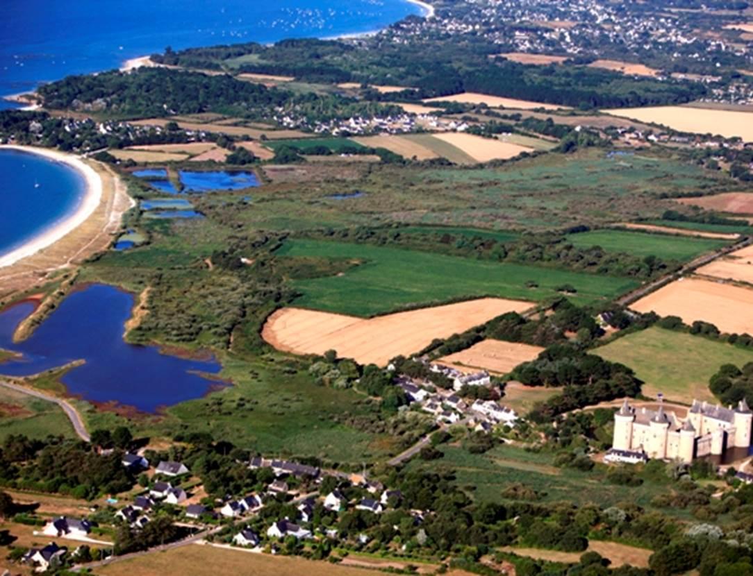 Marais et dunes de Suscinio - Sarzeau - Morbihan Bretagne Sud
