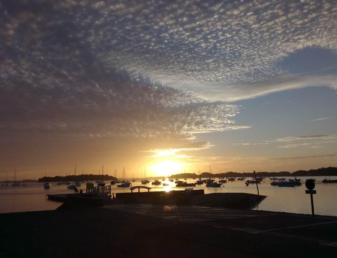 Guide de pêche en mer, Golfe du Morbihan, pêche au bar en bretagne, Sortie pêche en bateau à Sarzeau, Presqu'îles de Rhuys, pêche au bar avec un moniteur, guide de pêche professionnel