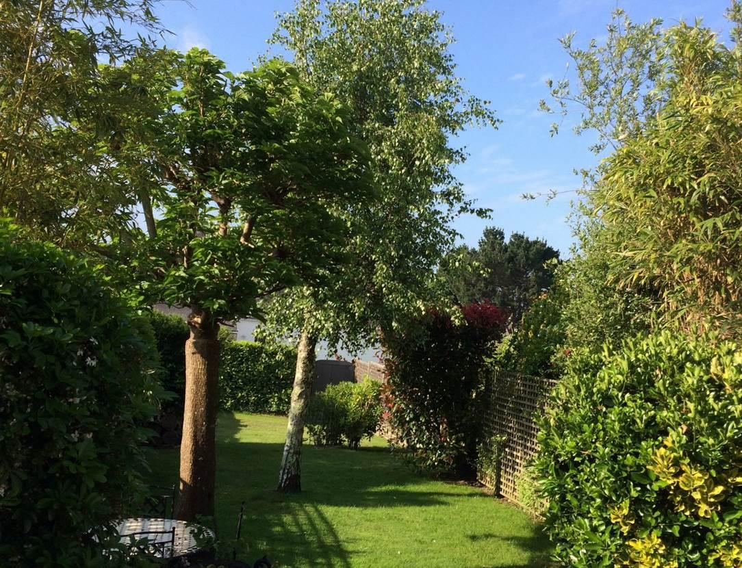 Jardin-Location-Desmadryl-Stephany-Brigitte-Arzon-Presqu'île-de-Rhuys-Golfe-du-Morbihan-Bretagne sud