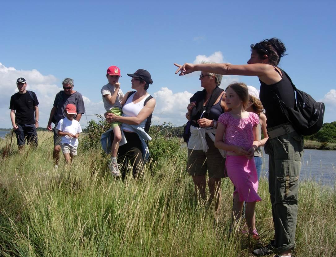 Sortie-découvrir-la-végétation-du-territoire-saint-gildas-de-rhuys-morbihan-bretagne sud